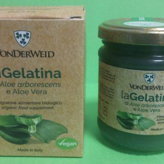 gelatina aloe