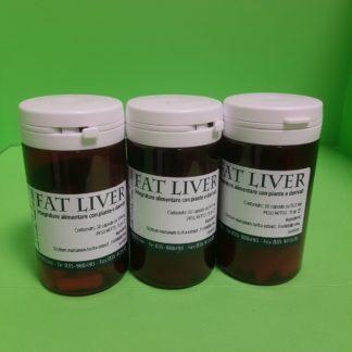 fat liver promo